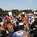 20081214柴犬大學聚會