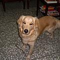 Minnie~2006/12