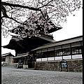 160406阿蘇神社