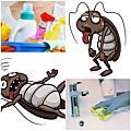 『免警蟑殺蟑堡』讓蟑螂死屋外+『免螞煩殺蟻堡』讓螞蟻不寄居