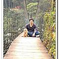 新竹薰衣草
