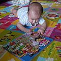 20120624看費雪的書