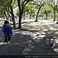 20140221大安森林公園