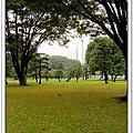 2004/11/1 東京都廳+皇居+新宿+淺草+台場之維納斯廣場
