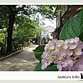2009京都-哲學之道散策