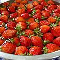 2008花海加草莓