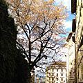 Geneva --100222