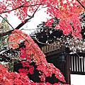 2018 京都 赤山禪院