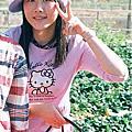 過年大湖採草莓(95)