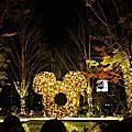 2012. 1209 TOKYO DAY 1.