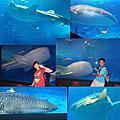 20140926-30沖繩之旅-Day4