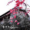2012.01.10 | 賽德克巴萊-林口霧社街