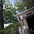 2010.08.18-435特區&林家花園
