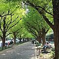 2014東京