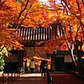 2008.12.1京都光明寺