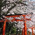 2010.4.6-2京都春爛漫