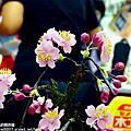 2013大立百貨日本工藝美食展