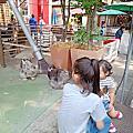 201911曼谷雙人行之關里安水上市場