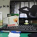 白蘭氏乳酸菌