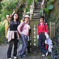 台美登山隊--大坑3號步道登山記