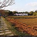 2015-1-1青林農場