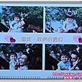 安威妍家2010年的專屬月曆