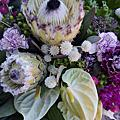 2014 xuexue 07 大型盆花