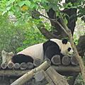 2013 Zoo 半日遊