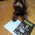 NIKE兒子的小幸運 -OnlyWay 碳系列除臭抗菌寵物尿布墊