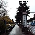 2010 日本東北賞櫻行程