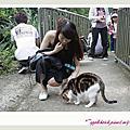 20111030 猴硐躲貓貓