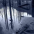 20111202~04 水漾森林