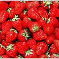 ♡~。【DIY】愛上草苺的香氛 之 草莓果醬DIY 。~♡