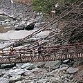 '19 02/27 大步危遊船,可怕的祖谷蔓橋