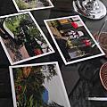 2011巴里島偽芳香之旅