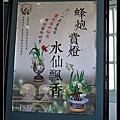 2015-03-15台南春遊