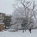 2014聖誕北海道D6