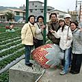 20050115苗粟採草莓
