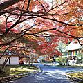 京都二尊院