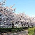 大阪南天滿公園