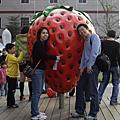 070114-大湖採草莓