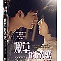 BD/DVD產品圖