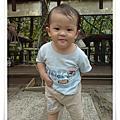 090606三峽皇后鎮森林