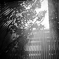 靜巷 - 下雨天的午後