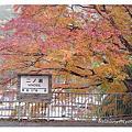2005 京都。北海道