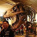 2010.03.14 中正紀念堂 《世界恐龍大展》