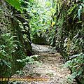 2012-0714 彰化市 八卦山一線天步道
