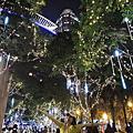 2012-1216  新北市板橋區 歡樂耶誔城 耶誕樹燈光秀