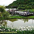 2014-0518 台北市內湖區 夫妻樹-同心池-春秋步道-白石湖吊橋