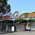 201704 神戶王子動物園